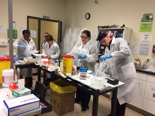 medical laboratory assistant/technician students, laboratory tests